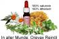 In aller Munde: 8ml Reinöl aus Oreganoöl, Thymianöl, Rosmarinöl, Kamillenöl, Weihrauchöl