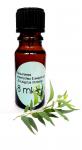 8ml naturreines ätherisches Eukalyptusöl